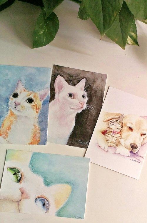 猫咪明信片 色铅笔手绘