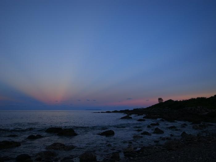 海洋的湛藍,覆蓋著充滿生命力的生物和元素。在一浪又一浪的波濤中,漂流木和充滿畫面感的海洋氣息,就隨著海浪打了上來,成為創作的素材和靈感。