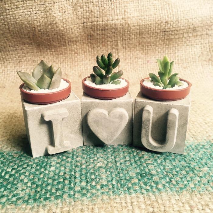 植栽 裝飾 居家佈置 植物 植物佈置 佈置 植栽挑選 植栽推薦 居家盆栽 室內植物設計 居家植物 居家植物佈置