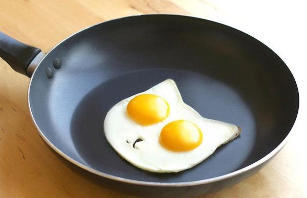 逗趣小貓陪你吃早餐!來一顆貓咪太陽蛋