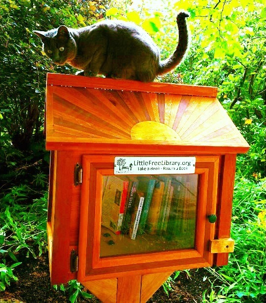 Little Free Library World Map.Dream Of Your Own Library Build One Read Zine Pinkoi