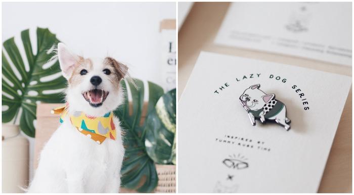 新加坡寵物用品 ohpopdog 狗狗領巾 法鬥胸針