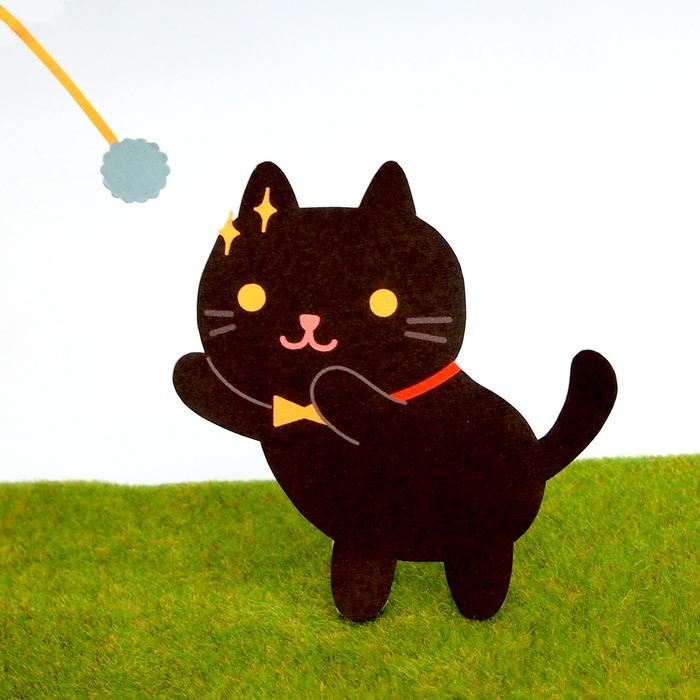 黑白貓 貓咪個性 虎斑貓個性 貓個性 貓 橘貓 黑貓 白貓 三色貓