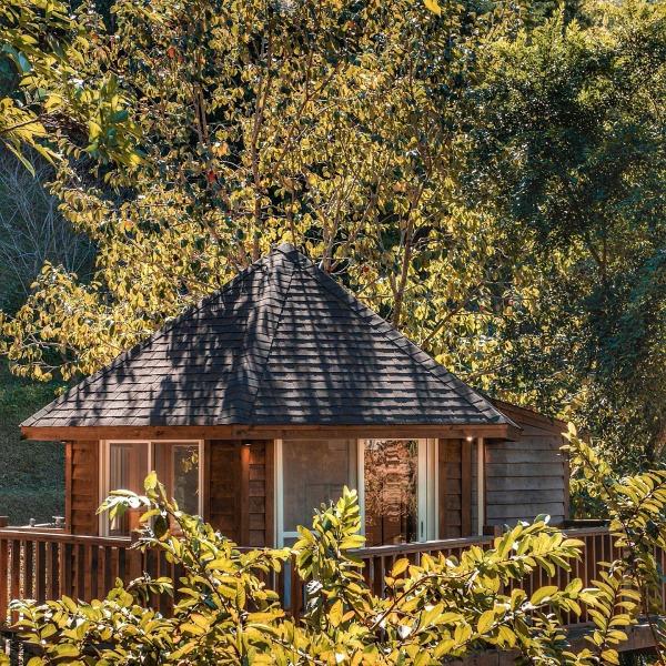 新竹橫山-野漾莊園-樹屋房型