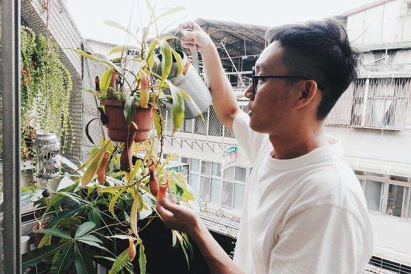 蘇三毛導演-小城植人專訪-豬籠草