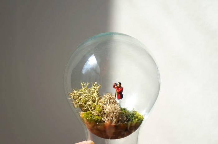 香港盆栽植屋的反重力燈泡