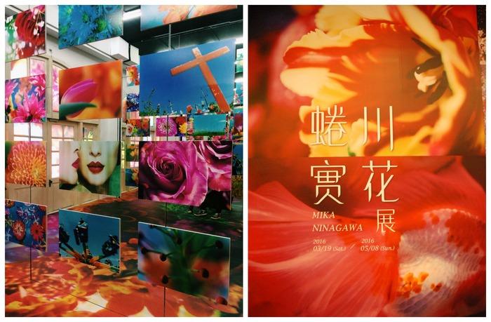 蜷川實花 Mika Ninagawa 展覽:鮮豔鏡頭下的真實綻放 | Pinkoi 設計誌.讀設計