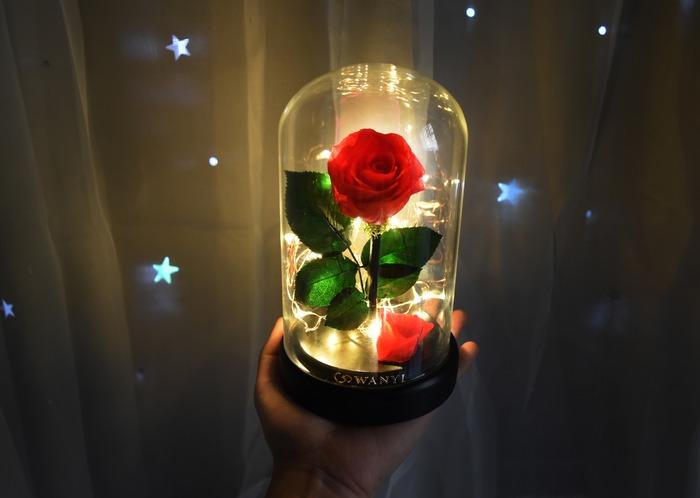美女與野獸 乾燥玫瑰花 玻璃罩